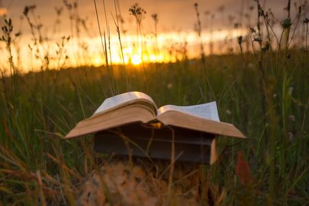 Otwarty w twardej oprawie książka pamiętnik, podsycana stron na niewyraźne tło charakteru krajobrazu, leżącego w polu latem na zielonej trawie na tle nieba słońca z tylnym światłem. Kopia przestrzeń, z powrotem do edukacji szkolnej tle. Zdjęcie Seryjne
