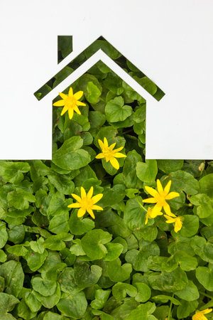 give out: Paper house against green background. Real Estate Concept.