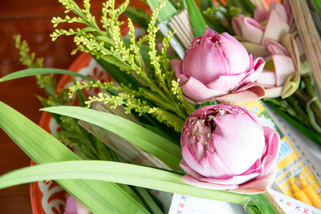 blessing: Thai lotus for blessing