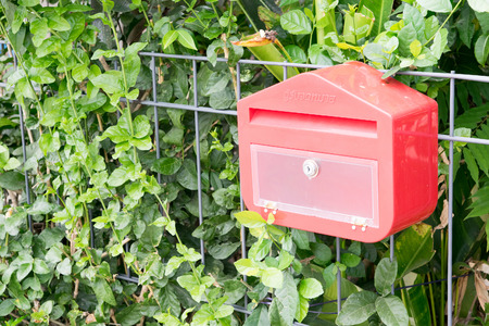 stell: plastic Thai mailbox on a steel fence