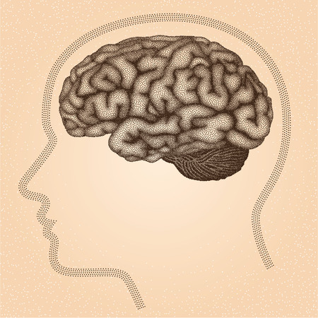 stippled: Human brain. Side view - vector stippled illustration