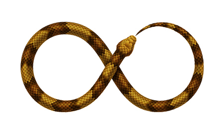 The Snake bites it's tail in the form of a sign of infinity. Ouroboros symbol. Vector realistic illustration isolated on a white background. Vettoriali