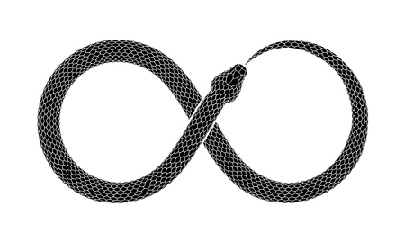 Snake bites it's tail in the form of a sign of infinity isolated on white background.