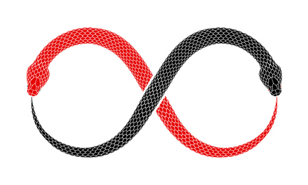 Vector illustration of two snakes intertwined in shape of Ouroboros sign are eating their tails. Tattoo design with red and black serpents isolated on a white background.