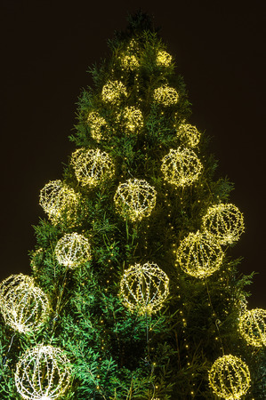 primordial: Christmas tree with electric decorations, lights in the night sky background