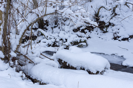 frozen river: frozen river in the forest of felled trees and ice