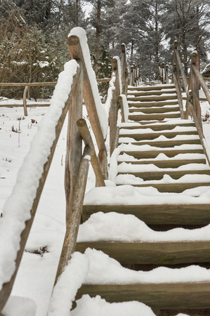 without people: Snow-covered tourist wooden stairs in a forest in winter, without people
