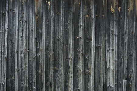 exceeded: Old wooden wall with nails gray water is exceeded