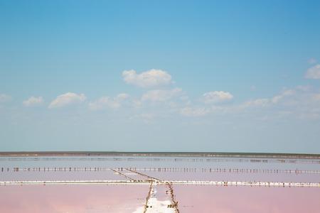 plancton: Estanques de evaporación de agua de mar salada con color rosa de plancton Foto de archivo