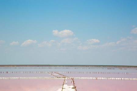 plankton: Salt sea water evaporation ponds with pink plankton colour