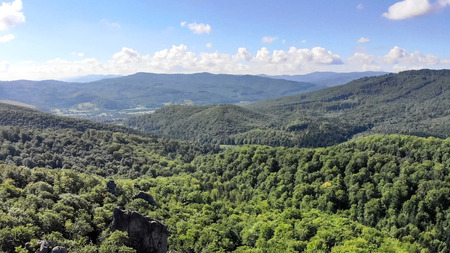 Drone Aerial fly over the mountains covered with green forest, a