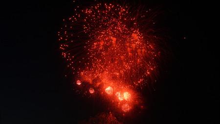 Beautiful red fireworks in dark black sky.
