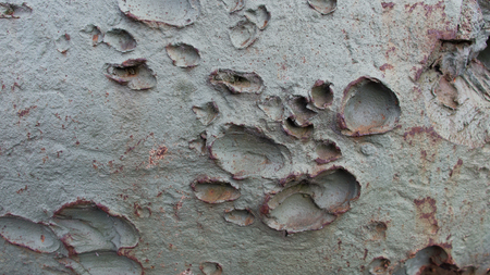Green metal surface of an old military machine tank is covered by marks of artillery shoots. A lot of bumps on a surface.