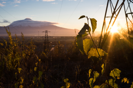 Sunrise is during great morning in mountains. Big metal high-voltage line is in right side. Beautiful grass and trees are under warm light. Sky is highlighted by the sun. Golden autumn in mountains.