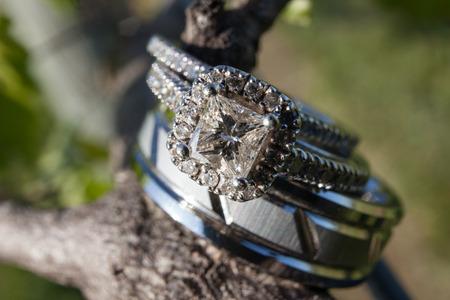 Wedding rings on grapevine Фото со стока