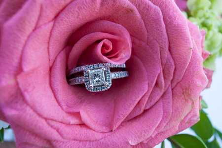 Wedding rings in a pink rose Stock Photo