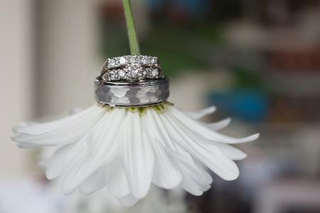 Wedding rings on a daisy flower 3