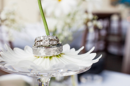 Wedding rings on a daisy flower