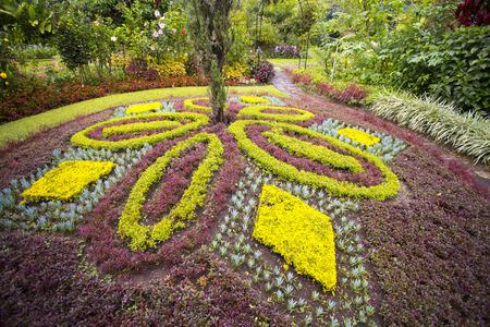 Fancy landscaping in a beautiful garden