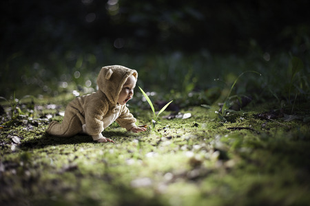 Young baby in a bear outfit crawling