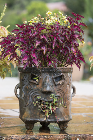 Mayan planter with face made of clay or stone Фото со стока