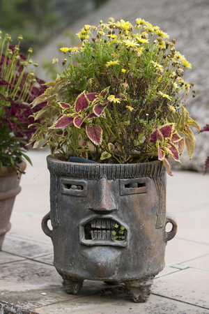 Fancy Mayan planter with face made of clay or stone