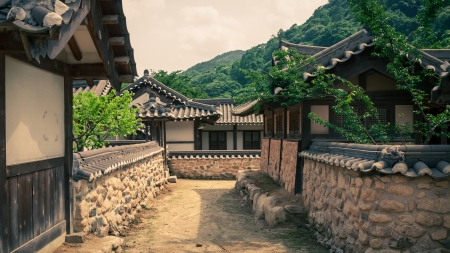 korean culture: The old-style houses of a folk village in Asia