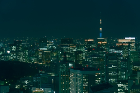 The cityscape of Tokyo at night, with the Tokyo Skytree in the far distance.