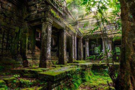 Entre las ruinas de Preah Khan en Siem Reap, Camboya. Foto de archivo