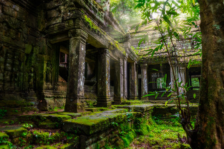 Onder de ruïnes van Preah Khan in Siem Reap, Cambodja.