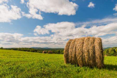 nb: Bails of hay dot the countryside in New Brunswick, Canada.