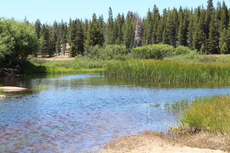 sierras: Pond At Tuolumne Meadows In Yosemite