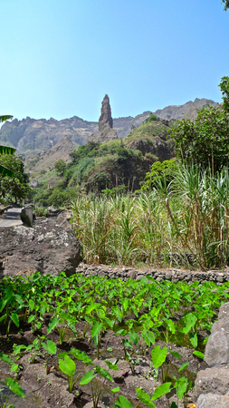 ribeira: Steep peak and agriculture in the valley of Ribeira da Torre, Santo Antao, Cape Verde