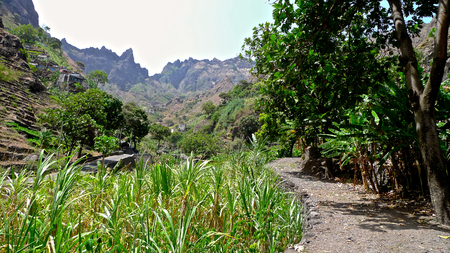 Agriculture in the Ribeira da Torre valley, Santo Antao, Cape Verde