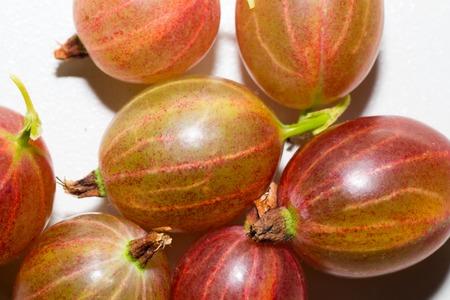 freshness: grosella espinosa bebida fruta frutas vegetales frescura