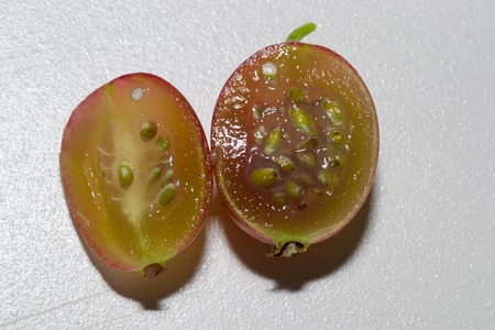 the freshness: gooseberry food drink fruit fruits vegetables freshness Stock Photo