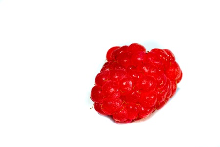 frescura: fruits berry white raspberry food freshness isolated ripe Foto de archivo