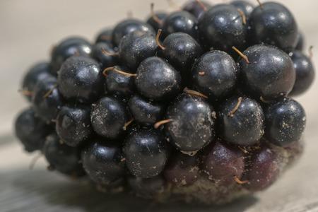 brambleberry: food berry blackberry fruit sweet drink freshness on