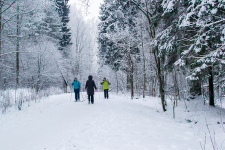 non urban 1: park winter man made white snow space nature road Stock Photo
