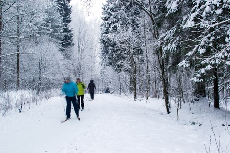 man made: park winter man made white snow space nature road Stock Photo