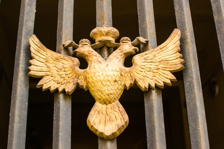 doubleheaded: double-headed eagle captured a beautiful day gold