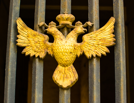 captured: double-headed eagle captured a beautiful day gold