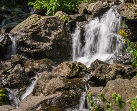 hydroelectric station: waterfall water nature falling river flowing outdoors