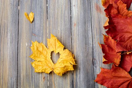 autumn leaves on a wooden background removed from the top yellow and red