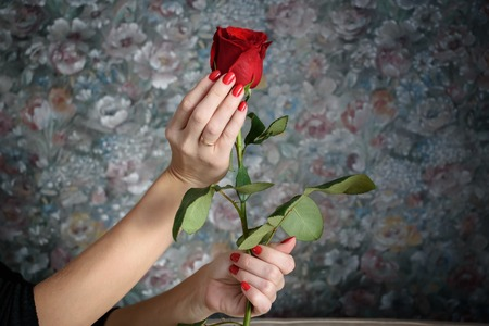 red hand: the red rose in the female hand.