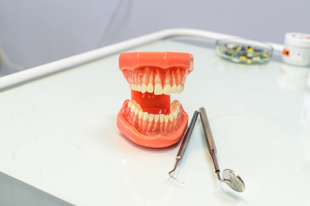 The jaws and tools dentist.