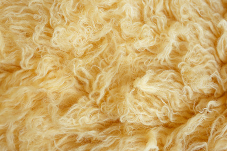 Yellow fur texture, close-up.Useful as background