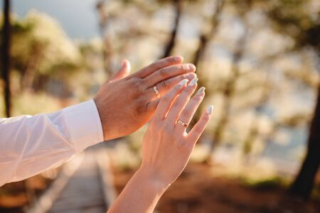 Newly wed couples hands with wedding rings. Stok Fotoğraf