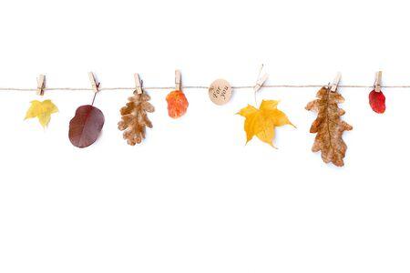 Fondo blanco aislado composición otoño