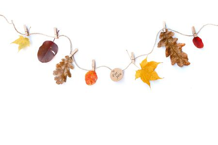 Autumn composition isolated white background